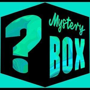 Mystery box of Torrid items